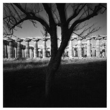 Mimmo Jodice, 'Tempio di Nettuno', 1986