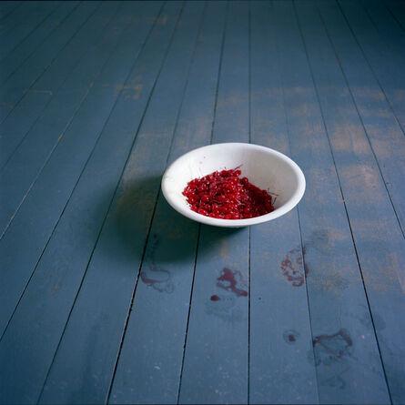 Cig Harvey, 'Bowl of Cherries, Rockport, Maine', 2007