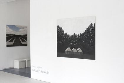 THINKING THE LANDSCAPE by Sonata Riepšaitė