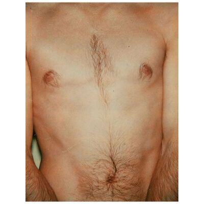 Andy Warhol, 'Polaroids Photograph, Sex Parts: Torso', 1977