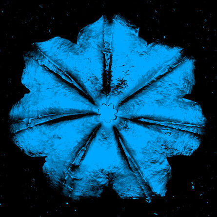 Rubem Robierb, 'Power Flower N-4 (Turquoise on Black)', 2016