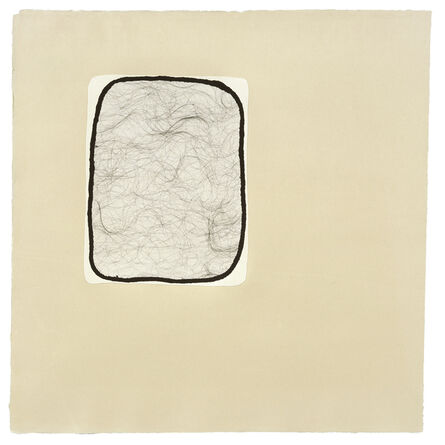 Ann Hamilton, 'script e', 2008