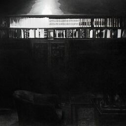 Adamson Gallery
