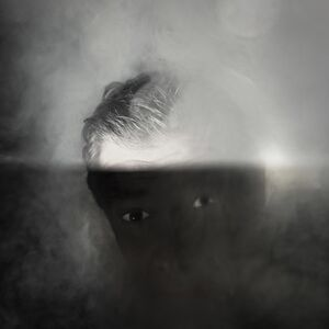 Jorge Molder, 'The strange substitute', 2018