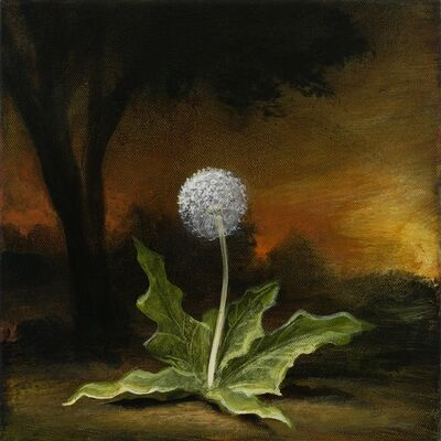 Kevin Sloan, 'Bloom', 2020