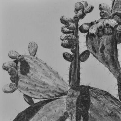 Samah Shihadi, 'Terra Studies 1', 2020