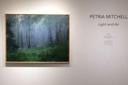 PETRIA MITCHELL Light and Air