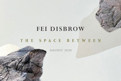 FEI DISBROW | THE SPACE BETWEEN
