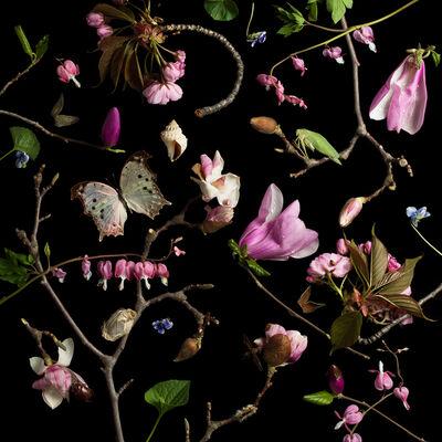 Paulette Tavormina, 'Botanical III (Bleeding Hearts and Magnolias)', 2013
