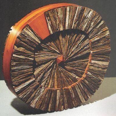 Ricardo Pascale, 'Rodando el movimiento', 2004
