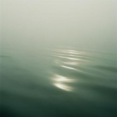 Debra Bloomfield, 'Wilderness 02082-8-07', 2014