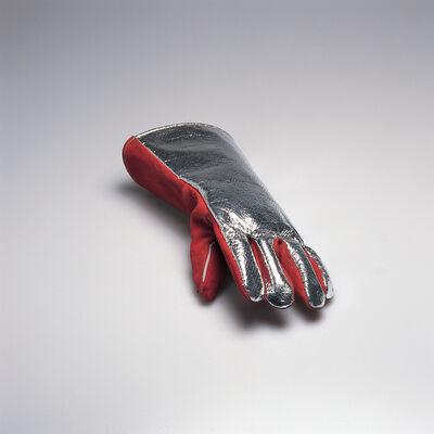 Roman Signer, 'Fireman's Glove with Photograph (for Parkett 45)', 1995