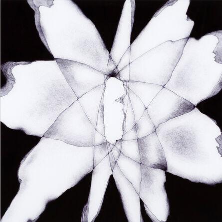 Chihiro Kabata, 'Following the Shadow, Kamuikotan Metamorphic belt', 2015