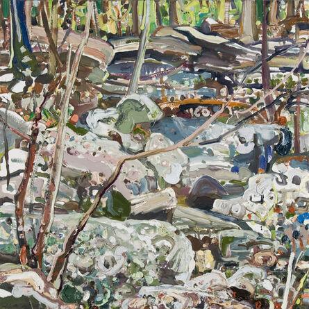 Lilian Garcia-Roig, 'Paint Rock Rocks', 2008