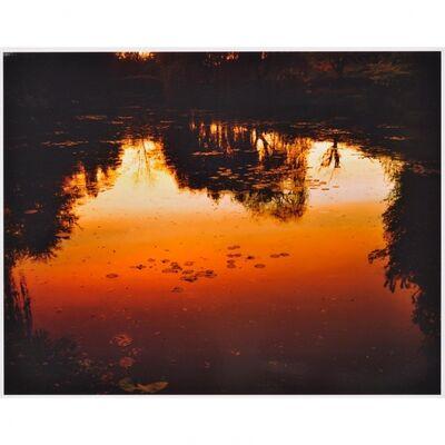 Elger Esser, 'Nocturne à Giverny', 2010