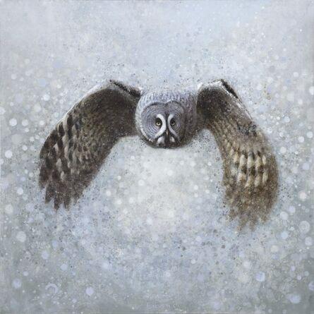 Ewoud De Groot, 'Lapland Owl IV'