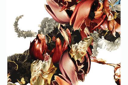 Renata Kudlacek - Quest to Bloom