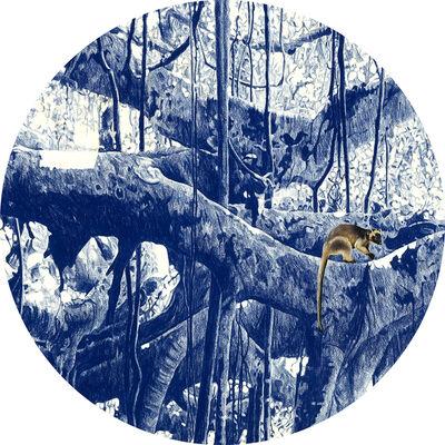 Danie Mellor, 'Ethology I', 2015