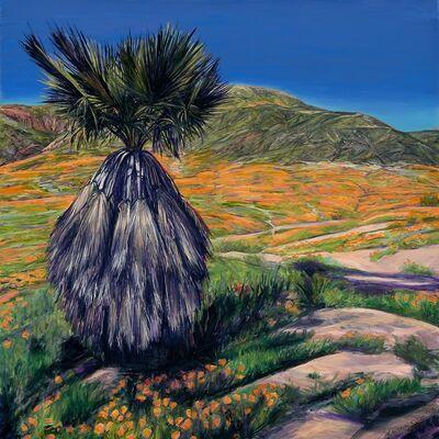 Mary-Austin Klein, 'California Poppy Super Bloom', 2020