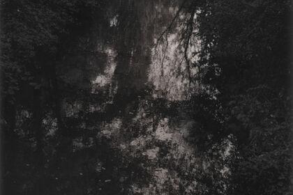 Ira Vinokurova | The River Knows