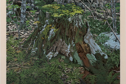 Neil Welliver | Nature and Abstraction