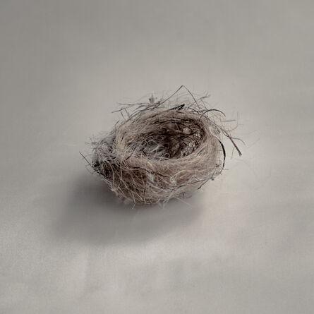 Kate Breakey, 'Untitled Nest III'