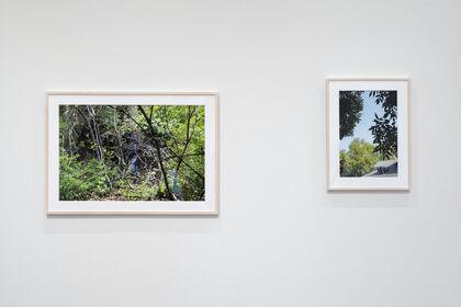 Laura Larson | The 2020 Greater Columbus Arts Council Visual Arts Awards Exhibition