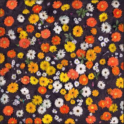 Eason Tsang Ka Wai, 'Floral Fabric No.10', 2013