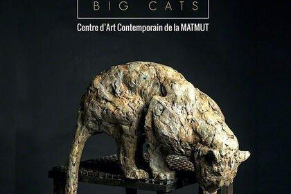 PATRICK VILLAS - BIG CATS