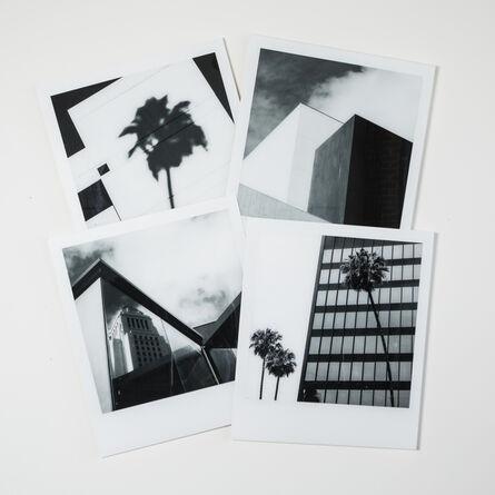 Matthew Nordman, 'Palm Angeles', 2019