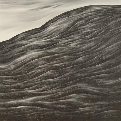 Robyn O'Neil, 'Something Vanished Over Paradise ', 2009