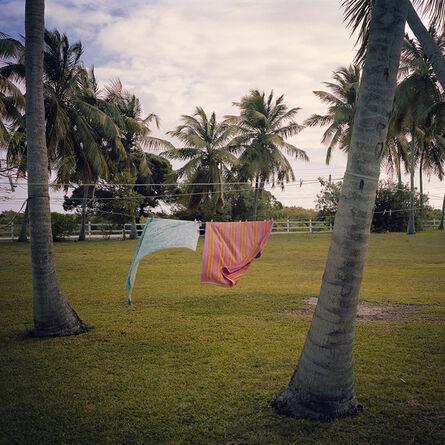 Larysa Sendich, '16.005 insta', 2016