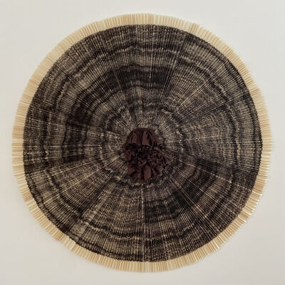 Ann Hamilton, 'ciliary (#9)', 2010