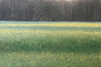 BENOÎT TRIMBORN | Arborescence