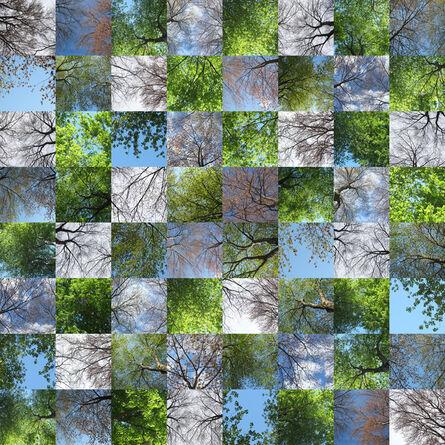 Maria Passarotti, 'Leafing Out', 2015