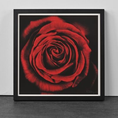 Robert Longo, 'Rose, from Ophelia', 2005