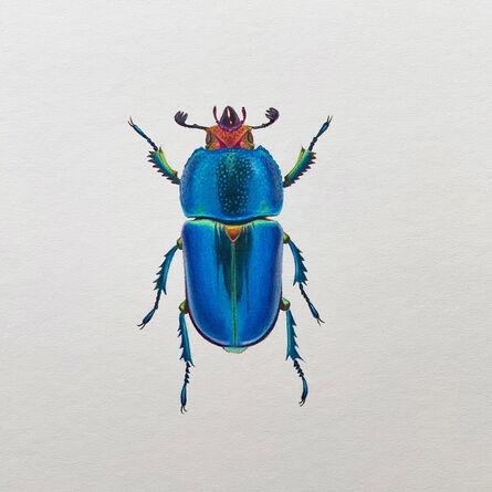 Hannah Hanlon, 'Blue Beetle #4', 2020