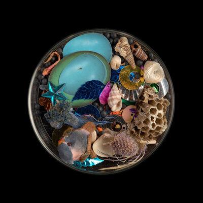 Suzanne Anker, 'Vanitas (in a Petri dish) #87', 2019