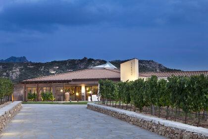 Surrau Winery SaSa Exhibition