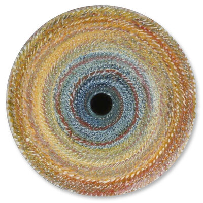 Christopher H. Martin, 'Reticulate Disc 1', 2014