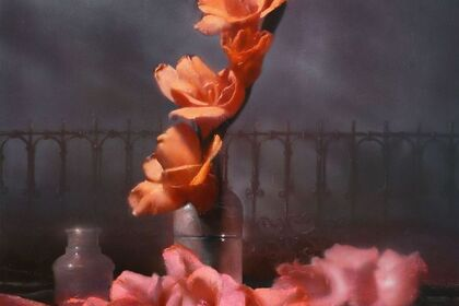 David Dornan - New Work