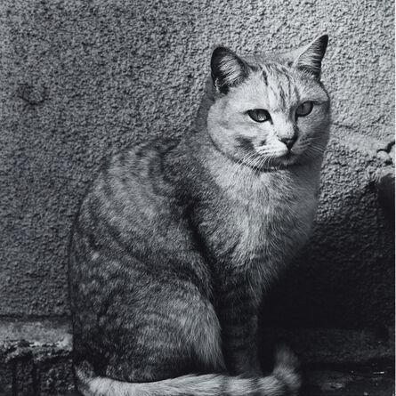 Issei Suda, 'Ochanomizu, Chiyoda-ku, 1980'