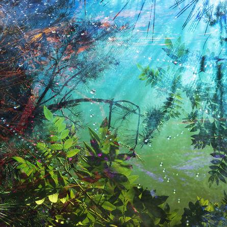 Karine Laval, 'Untitled #11', 2014