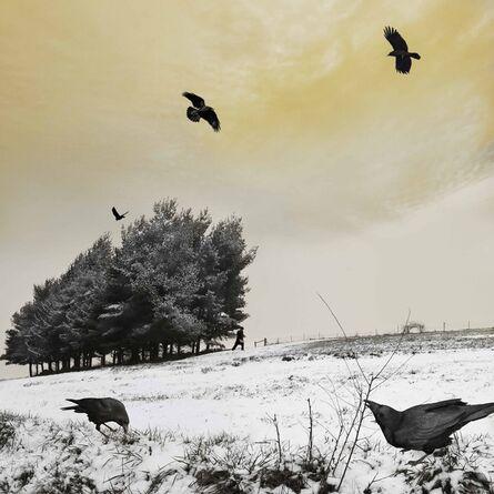 Tom Chambers, 'As the Crow Flies ', 2013