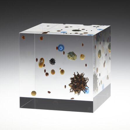 Satoshi Hirose, 'Beans Cosmos', 2013