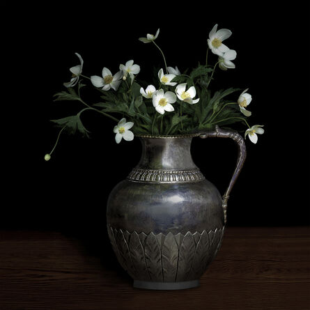 T.M. Glass, 'Anemone Canadensis in a Silver Jug', 2018