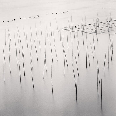Michael Kenna, 'Seaweed Farms, Study 9, Xiapu, Fujian, China', 2010