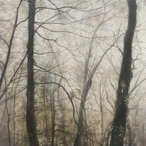 Kimberly Clark, 'Jocassee in the Fog', 2019