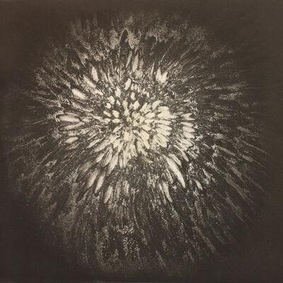 Ross Bleckner, '(On) Shadow', 2010