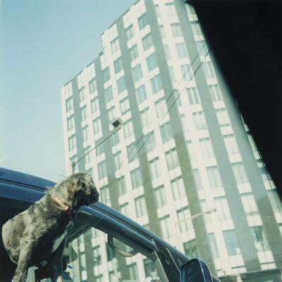 Mikiko Hara, 'Untitled', 2008